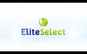 «ELITE SELECT» — ВРОЖАЙНІ ГІБРИДИ СОНЯШНИКУ