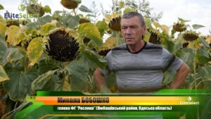 Микола Бобошко: «Всім рекомендую гібриди «Elite Select», я отримую по 30 ц/га і — дуже задоволений!